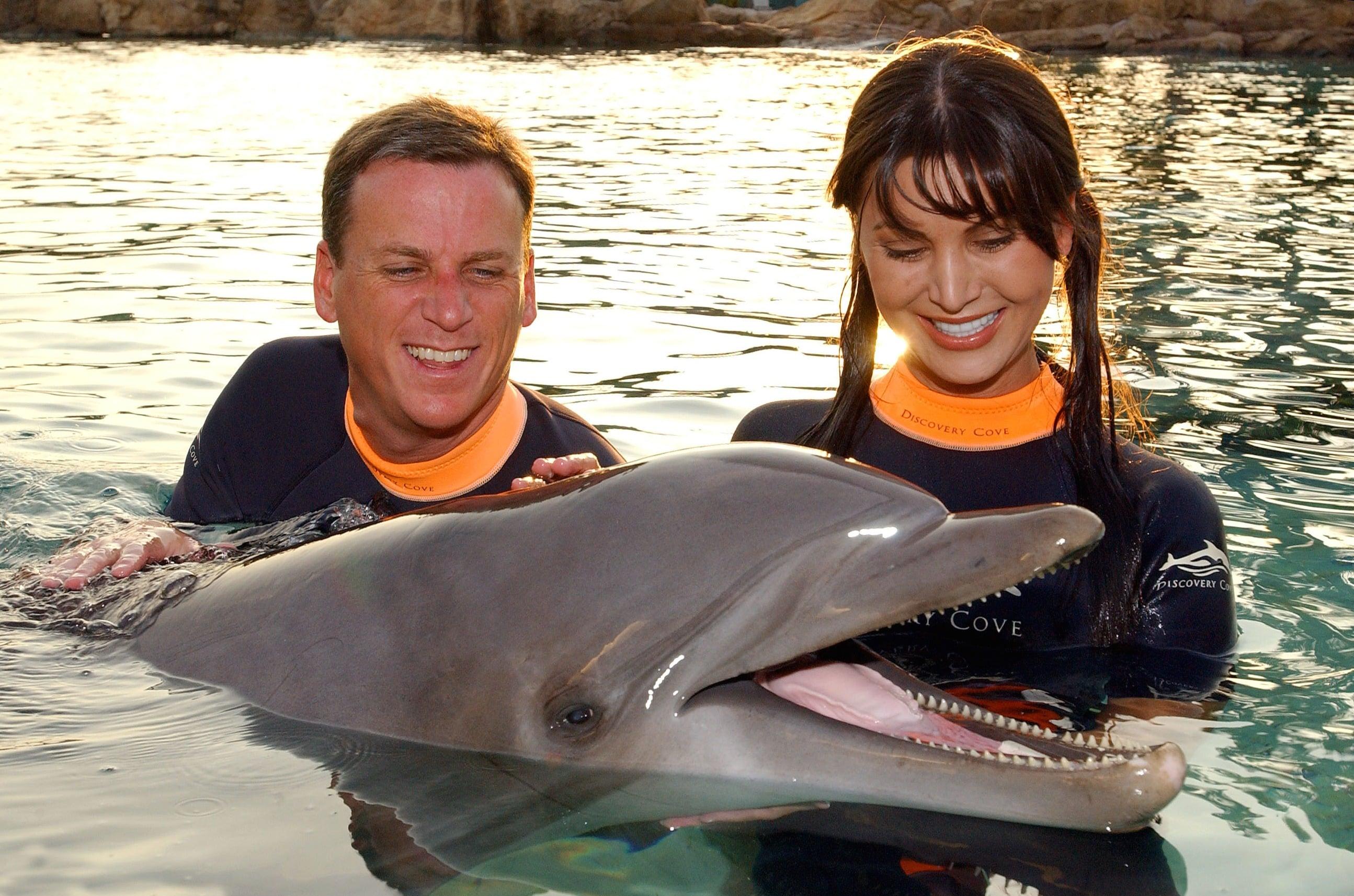 Discovery Cove Special Ocassions Florida Resident Specials