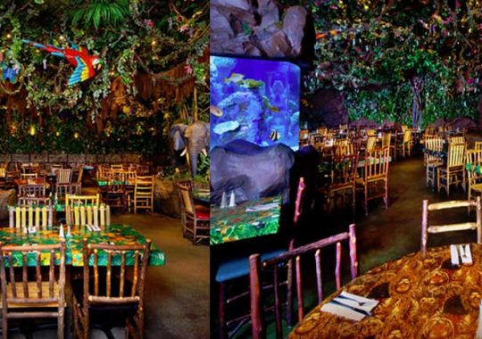 Rainforest Café Orlando