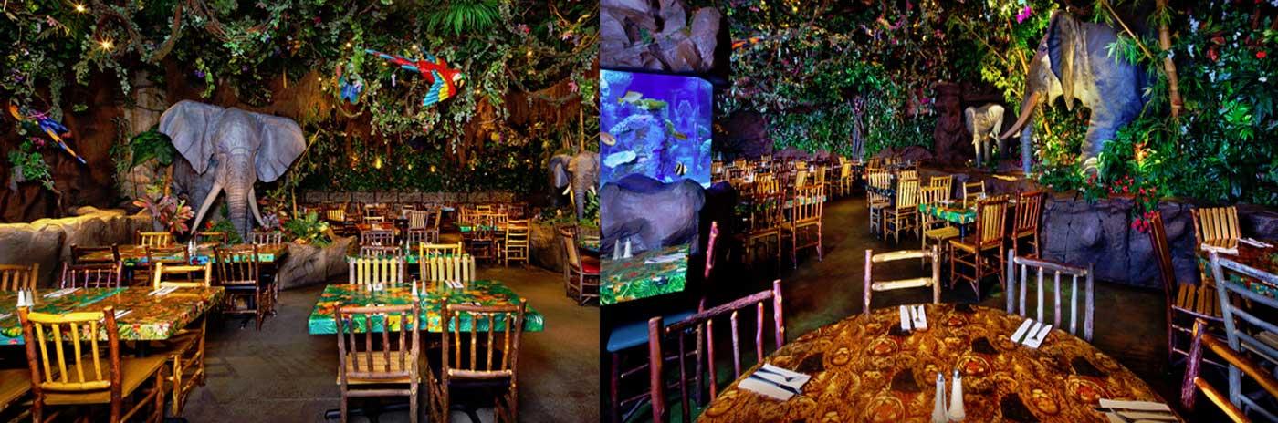 Rainforest Caf 233 Orlando Orlandoescape