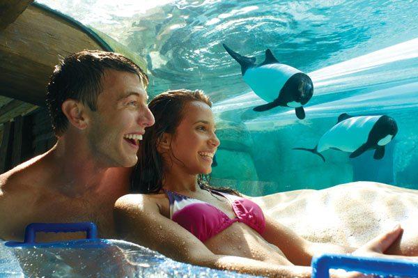Seaworld Parks Orlando ticket options