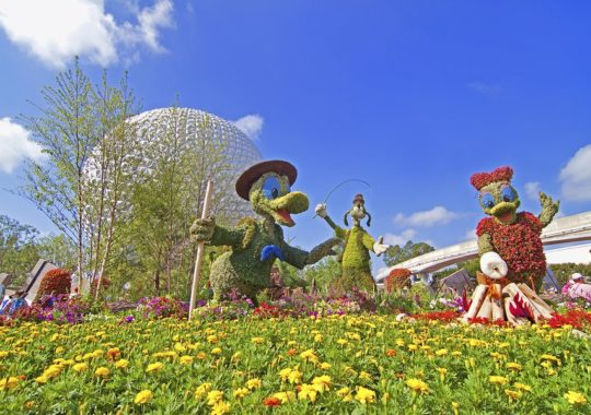 Important Tips To Know For Your Disney World Visit