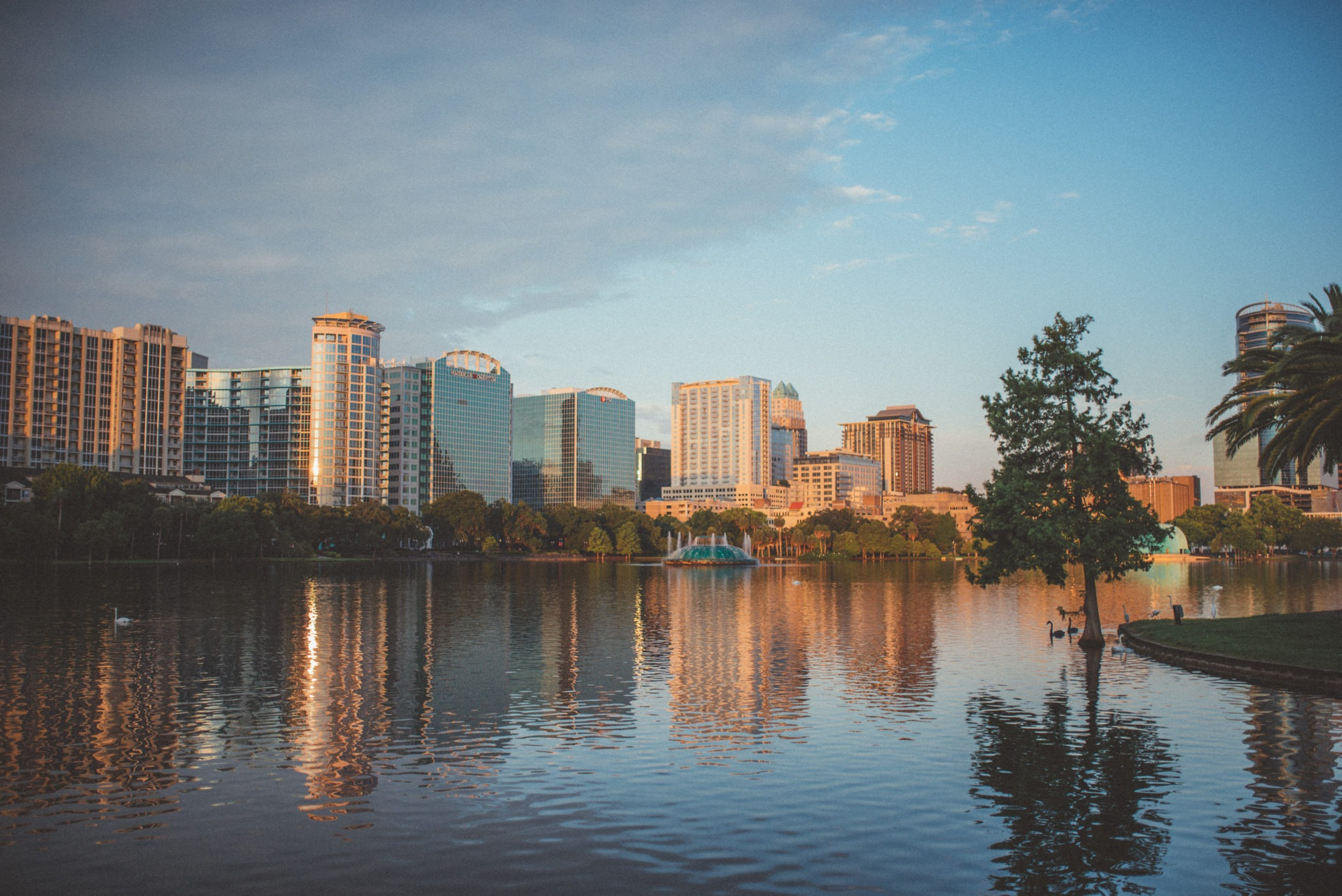 Hotels in Downtown Orlando