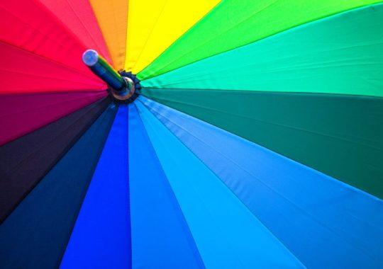 Orlando in the Rain: 25 Fun Indoor Activities