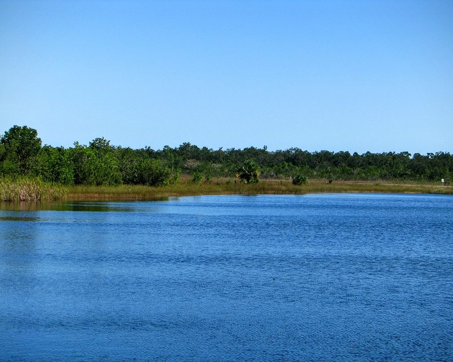 Get to know 4 of Central Florida's beautiful State Parks