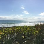 Orlando Day Trip: Canaveral National Seashore Florida