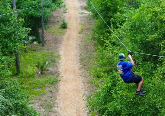 Night Climb Adventures Now Available at Orlando Tree Trek Adventure Park